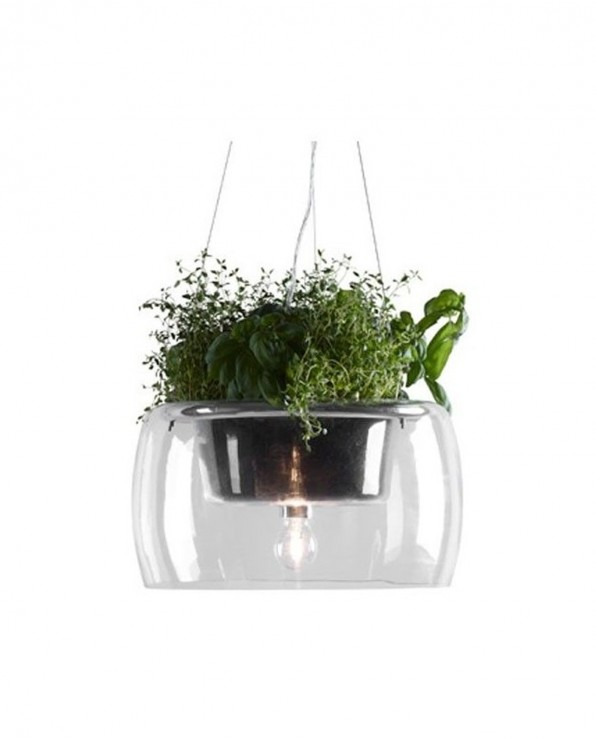 griestu_lampa_plant